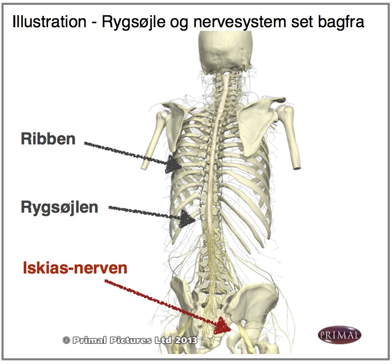 behandling af nervesmerter